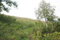 8. Лес расступился, меня окружают спускающиеся с гор луга.