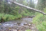66. Берега круты, камни скользки, речка холодна, завалы часты.