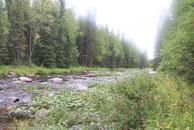 69. Река отсюда вполне пригодна для сплава на байдарке.
