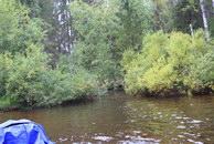 73. Проплыв почти с километр справа – то ли заводь, то ли приток. Возможно так впадает р. Широкая.