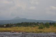 131. Вид от Верхней Косьвы на Острый тур.